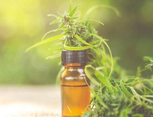 CBD Öl – Wirkung, Anwendung und Dosierung