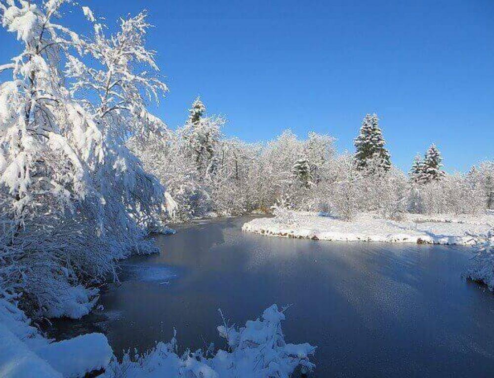 Hausapotheke für den Winter: Gut ausgestattet durch die kalte Jahreszeit