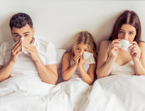 Heilkräuter gegen Erkältungen